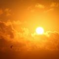 Справяне с летните жеги без тежка климатизация: прозорци за слънцезащита