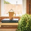 Дървени прозорци: класика, уют, дълготрайност